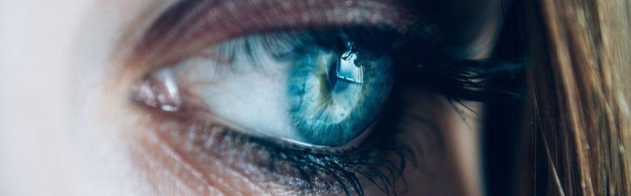 Aufbau eines Auges