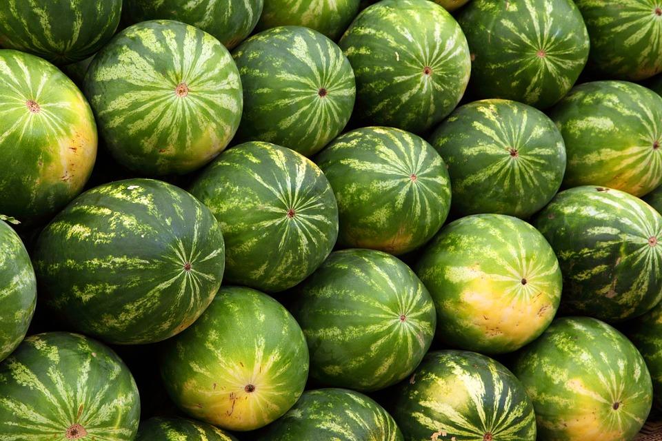 schwarze Wassermelonen
