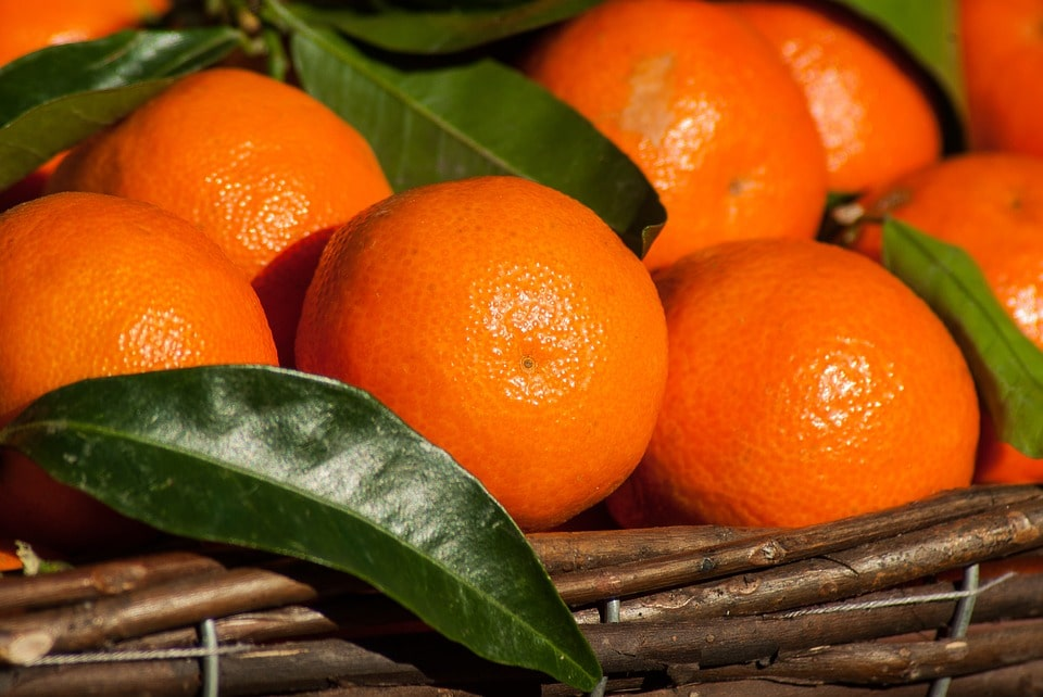 frische-clementinen